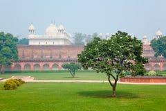 Cortyard w Czerwonym forcie w Agra, Uttar Pradesh, India Obraz Royalty Free
