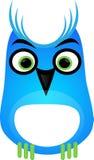 Coruja azul Fotografia de Stock