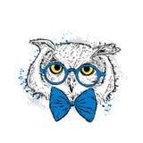 Coruja bonito com vidros e um laço Ilustração do vetor para um cartão ou um cartaz Cópia na roupa pássaro Forma & estilo ilustração do vetor