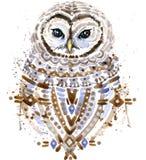 Coruja bonito Coruja da aquarela Ilustração de Owl Tee Shirt Foto de Stock Royalty Free