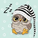 Coruja bonito do sono Fotos de Stock