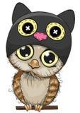 Coruja bonito dos desenhos animados em um chapéu do gato Fotografia de Stock Royalty Free