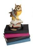 Coruja com livros Imagem de Stock Royalty Free