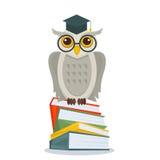 Coruja com os vidros e o chapéu acadêmico que sentam-se na pilha de livros Coruja nos livros isolados Conceito da instrução com c Imagens de Stock Royalty Free