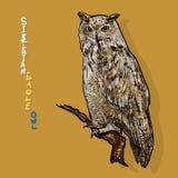 Coruja de águia Siberian, ou sibiricus do bubão do bubão Vetor Foto de Stock