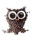 Coruja de Conteptual feita com feijões de café Fotos de Stock Royalty Free
