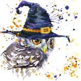 Coruja de Dia das Bruxas e chapéu da bruxa fundo da ilustração da aquarela Fotos de Stock