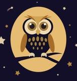 Coruja de noite Imagem de Stock