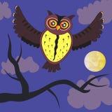 Coruja de noite dos desenhos animados Fotos de Stock Royalty Free