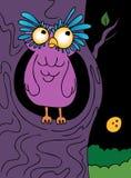 Coruja de noite dos desenhos animados Imagens de Stock Royalty Free