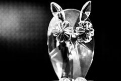 Coruja de vidro imagens de stock royalty free