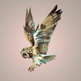 Coruja de voo isolada brilhante pintada ilustração do vetor