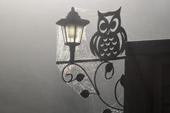 Coruja decorativa, luz solar e teia de aranha na névoa e no Frost do amanhecer foto de stock