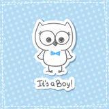 Coruja do bebê Fotos de Stock Royalty Free
