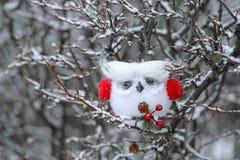 Coruja do White Christmas com capas protetoras para as orelhas vermelhas Imagens de Stock Royalty Free