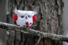 Coruja do White Christmas com capas protetoras para as orelhas vermelhas Imagem de Stock Royalty Free
