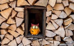 Coruja engraçada da decoração que está no meio de uma pilha de madeira fotos de stock royalty free