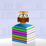 A coruja lê livros Fotos de Stock