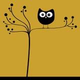 Coruja na árvore Fotos de Stock