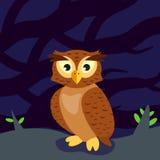 Coruja na floresta na noite ilustração royalty free