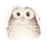 Coruja natural do boho das penas de pássaros da aquarela Cartaz boêmio das corujas Ilustração do boho da pena para seu projeto Az Foto de Stock Royalty Free