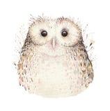 Coruja natural do boho das penas de pássaros da aquarela Cartaz boêmio das corujas Ilustração do boho da pena para seu projeto Az Fotografia de Stock Royalty Free