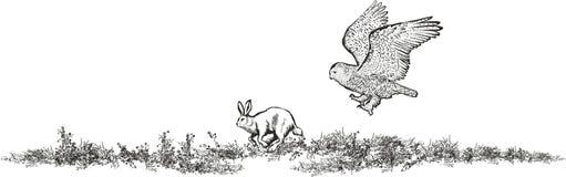 A coruja nevado caça a lebre ilustração stock