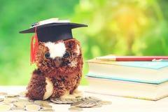 Coruja no chapéu da graduação com livros e pilha de dinheiro das moedas em n fotografia de stock