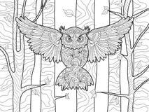 Coruja no livro para colorir da floresta para o vetor dos adultos ilustração royalty free