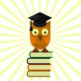 Coruja no tampão acadêmico que senta-se em uma pilha dos livros, graduação ilustração stock