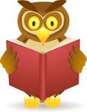Coruja que lê um livro Fotografia de Stock