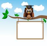 Coruja que senta-se em três com whiteboard Fotografia de Stock Royalty Free