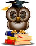 Coruja sábia em uma pilha de livros ilustração do vetor