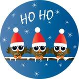 Coruja três pequena bonito do Feliz Natal boas festas ilustração do vetor