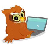 Coruja usando um portátil Foto de Stock Royalty Free