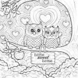Corujas bonitos - Art Therapy Coloring Page Imagem de Stock