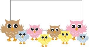 Corujas coloridas com um cartaz grande Imagem de Stock Royalty Free