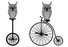 Corujas com bicicleta velha, vetor Fotografia de Stock Royalty Free