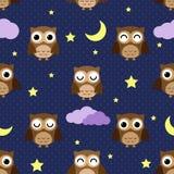 Corujas de noite Imagens de Stock