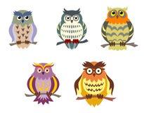 Corujas dos desenhos animados da cor Imagens de Stock Royalty Free