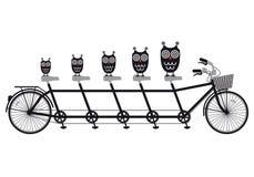 Corujas na bicicleta em tandem, vetor Fotos de Stock Royalty Free