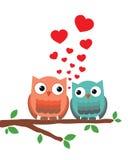 Corujas no amor Imagens de Stock Royalty Free