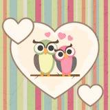 Corujas no amor Imagem de Stock