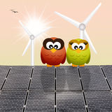 Corujas nos painéis solares Foto de Stock