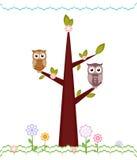 Corujas que sentam-se em ramos. Fotos de Stock Royalty Free
