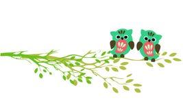 Corujas que sentam-se em ramos Imagem de Stock