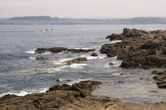 Coruna coastline Royalty Free Stock Photo