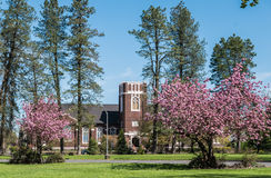 Corvallis, Oregon, erste Evangelisch-methodistische Kirche im Frühjahr lizenzfreie stockfotos