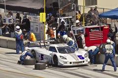 Corvette CanAm nell'arresto del pozzo al grande Rolex corre Fotografia Stock Libera da Diritti