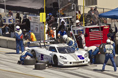 Corvette CanAm in pit stop at Grand AM Rolex Races Royalty Free Stock Photo